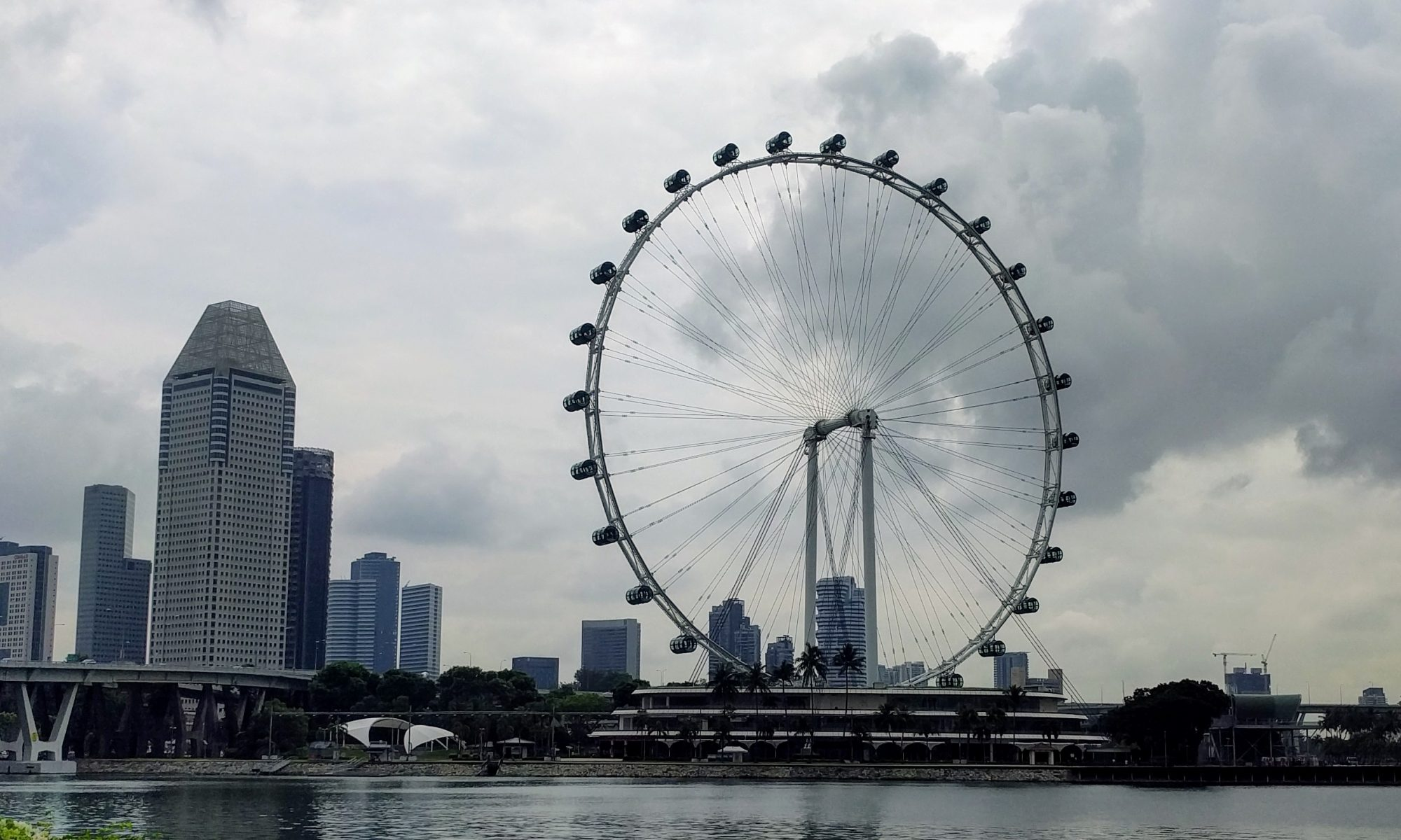 Singapore Flyer from Gardens by the Bay