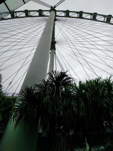 From the base of the Singapore Flyer